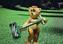 Afbeeldingsresultaat voor bad taste bears collection