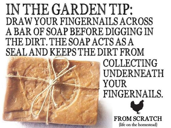 Love this, but dirt under your nails is half the fun!