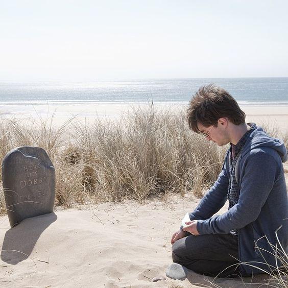 here lies dobby - photo #1