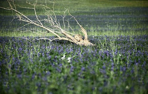 camuflagem (Foto: Leonie Gené e Joerg Duesterwald)