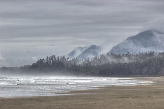 West Coast Mist - Photography by Randy Hall  #LongBeach, #Tofino, #Canada, #BritishColumbia