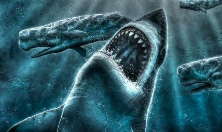 Shark 3d And Cg Abstract Background Wallpapers On Desktop Shark Images Shark Background Shark Pictures