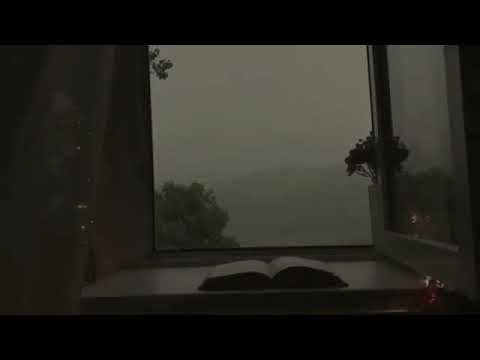 تستهويني أجواء الش تاء كثيرا الب رد ضج يج المطر ورائحة الأرض الم بللة Youtube Instagram Highlight Icons Flat Screen Rain