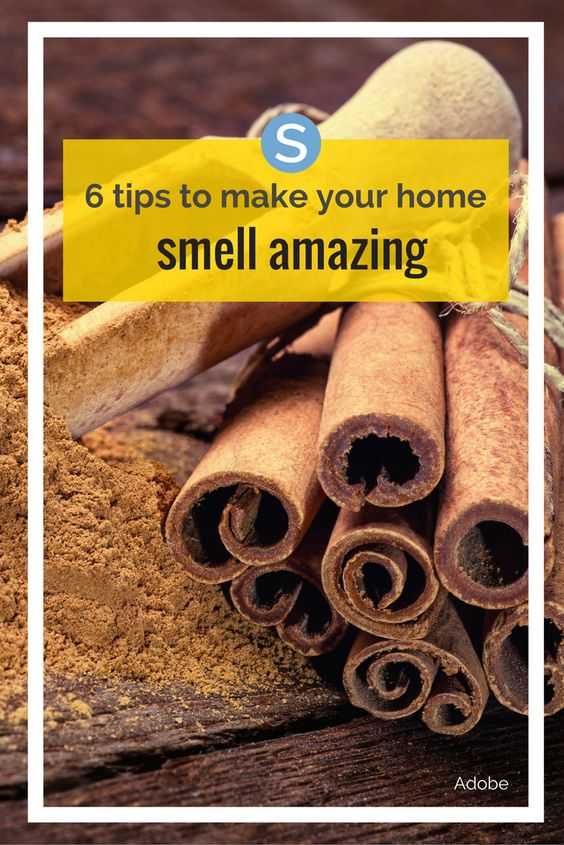 6 Tips To Make Your Home Smell Amazing Diy Ideas Make
