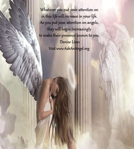 Whatever you put your attention on in this life will increase in your life. As you put your attention on angels, they will begin increasingly to make their presence known to you.  Denise Linn Visit www.AskAnAngel.org