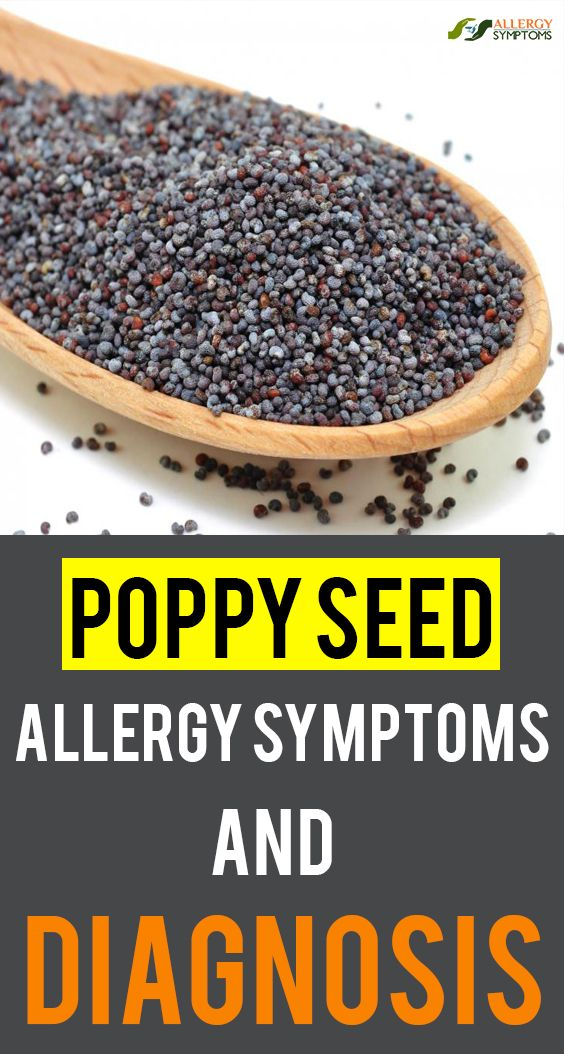 Poppy Seed Allergy Symptoms And Diagnosis Food Allergies