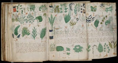 """( just kidding...)  The Voynich manuscript, described as """"the world's most mysterious manuscript"""",[3] is a work which dates to the early 15th century (1404–1438), possibly from northern Italy. It is named after the book dealer Wilfrid Voynich, who purchased it in 1912. The book contains herbal and medicinal information, and cosmological / astronomical information. Written in an unknown language or code, it's never been deciphered."""