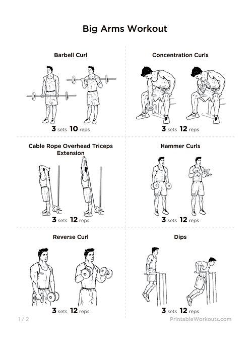 big arms workout  biceps  u0026 triceps exercises printable