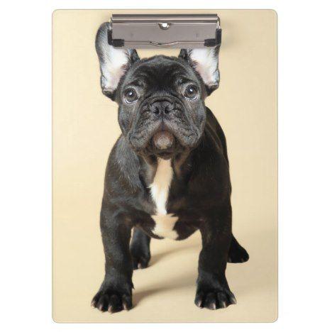 French Bulldog Puppy Clipboard Zazzle Com French Bulldog