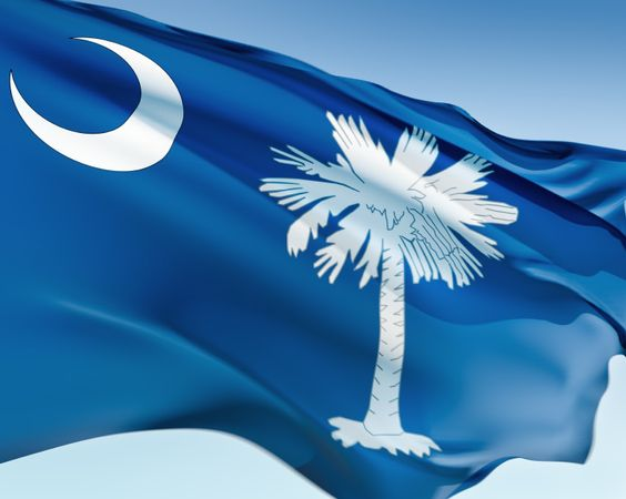 It's a beautiful day when you see the South Carolina flag flying high!