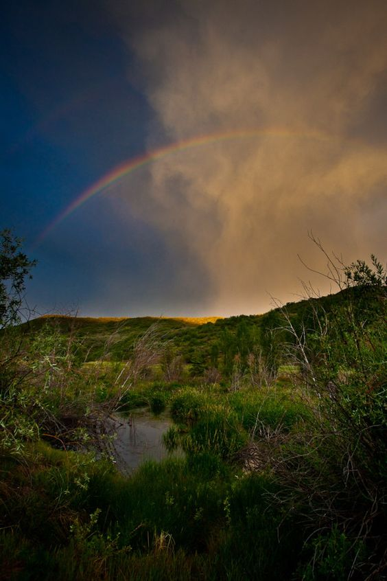 A rainbow over Brush Creek just now in #Snowmass - by Jeremy Swanson @jswansonphoto