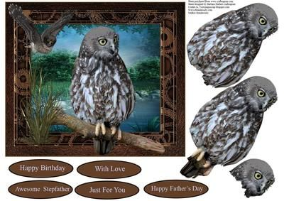 Scenic Owls Card Topper with Decoupage on Craftsuprint - Add To Basket!