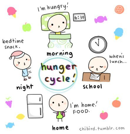 The Hunger Cycle #humor #lol #funny