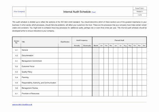 30 Internal Audit Plan Template In 2020 Internal Audit Report