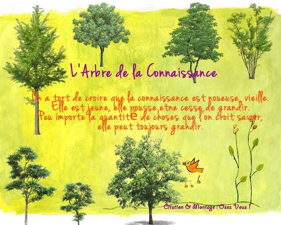 #connaisssance #grandir