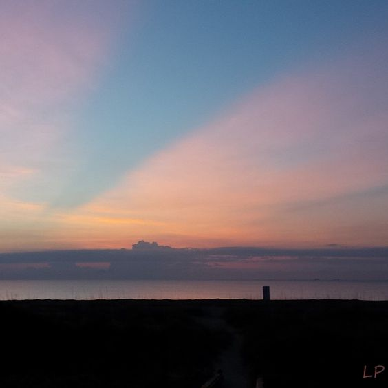 Tybee Sunrise Here is a sunrise! My hub and I visited Tybee Island in June of 2015. We had a cute B+B that was a 3 minute walk down to the beach, so every morning I would wake up and run down to the...