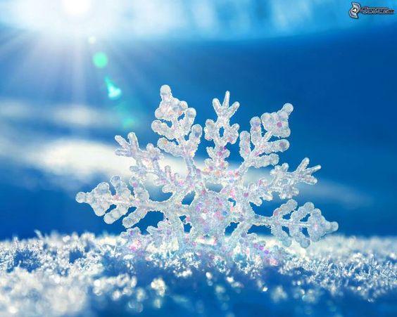 Resultado de imagen de copos de nieve reales