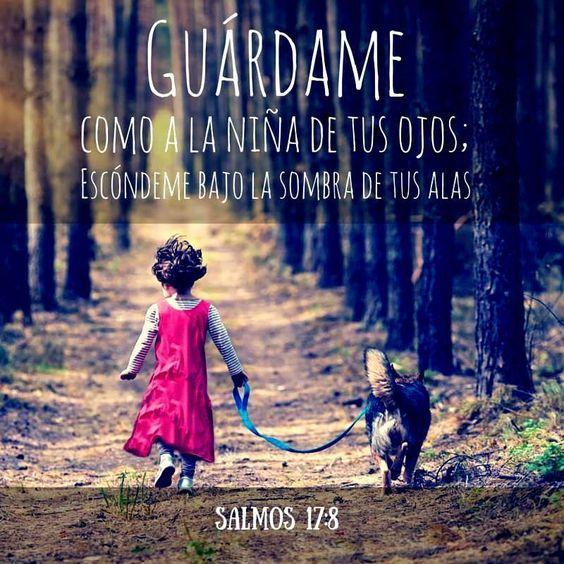 << Guárdame como a la niña de tus ojos; escóndeme bajo la sombra de tus alas >>. Salmos 17:8