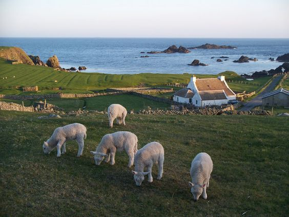 Fair Isle, Shetlands. Fair Isle is the most remote inhabited island in the United Kingdom. It looks so beautiful and peaceful...would just love to visit.