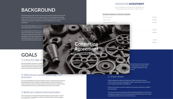 Independent consultant to support Expats Consulting Business - independent consulting agreement
