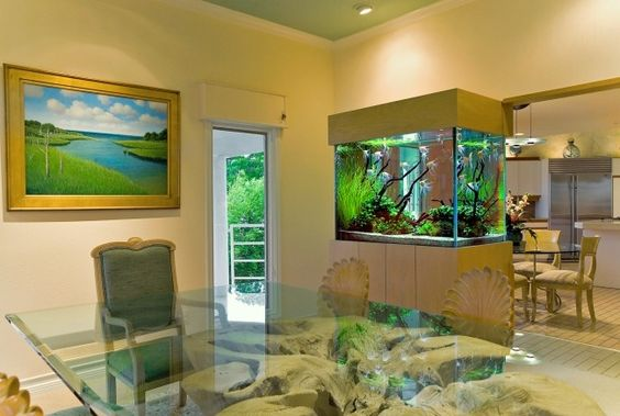 Aquarium Dekoideen Wohnzimmer Küche Trennwand Funktion | Aquarium |  Pinterest | Dekoideen Wohnzimmer, Aquarium Und Wohnzimmer