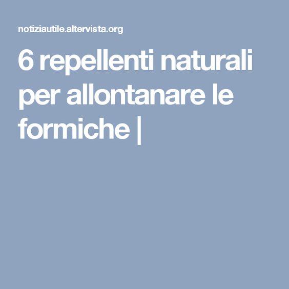 6 repellenti naturali per allontanare le formiche |