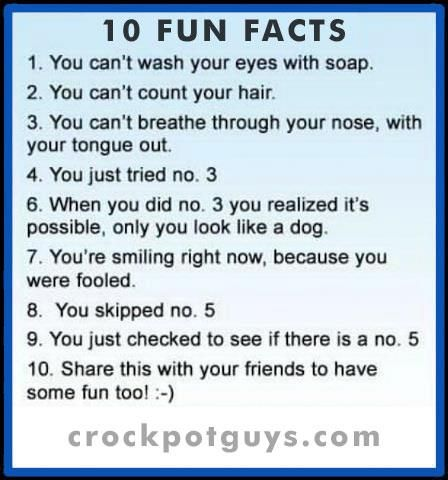 still funny though funny pinterest fun facts facts and fun