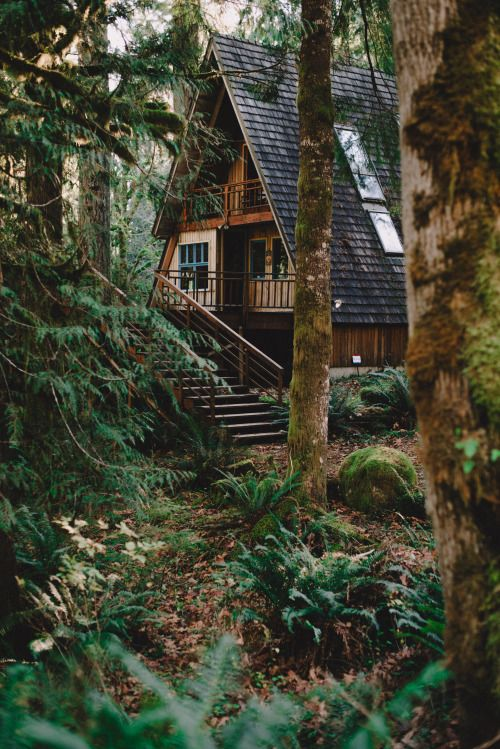 Cottage in chalets and cabin on pinterest for Cabin in the woods oregon