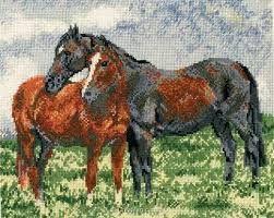 """Résultat de recherche d'images pour """"points de croix cheval"""""""