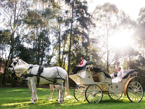 A horse and carriage was a fitting mode of transport for the racing industry couple - jockey Tommy Berry and Sharnee Nisbet's - wedding. #horseandcarriage #bride #groom #weddings