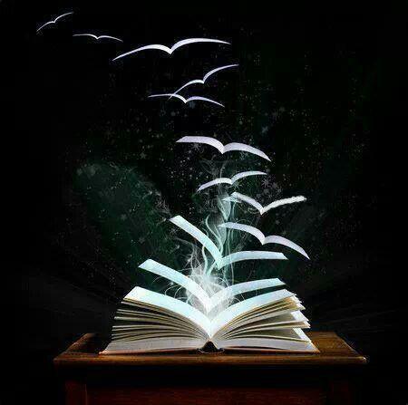 escape with a book