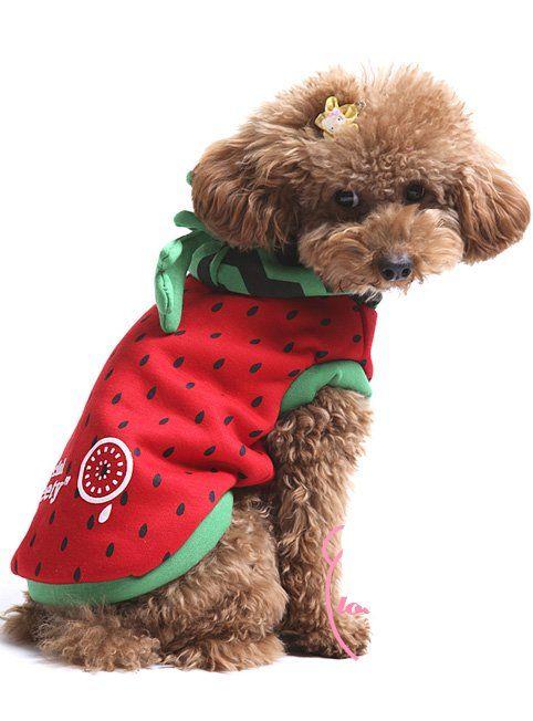 Melancia projeto copa do mundo Pet dog hoodies, Filhote de cachorro cachorrinho treino de animais de S a XL alishoppbrasil
