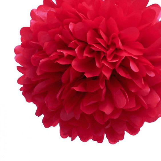 Red Tissue Paper Pom Pom  12 inches by PinkPoppyPartyShoppe