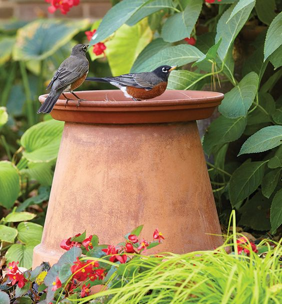 Flower pot birdbath: You don't have to spend a lot to bring birds into the yard! Here's how to make a simple birdbath from a terra-cotta pot.