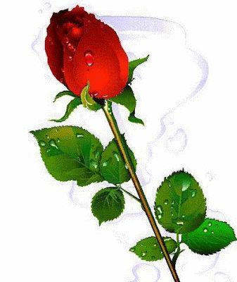 14 gifs de amor animados con movimiento para el Día del Amor y la Amistad (14 de febrero) | Banco de Imágenes Gratis