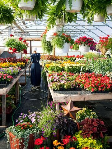 Holmes County, Ohio, Baskets & Blooms small business run by the Amish.