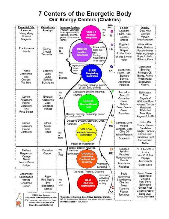 Chakra Chart - detailing essential oils, gemstones, immune system, musical notes, foods, herbs, colors, and physical body correspondences.: