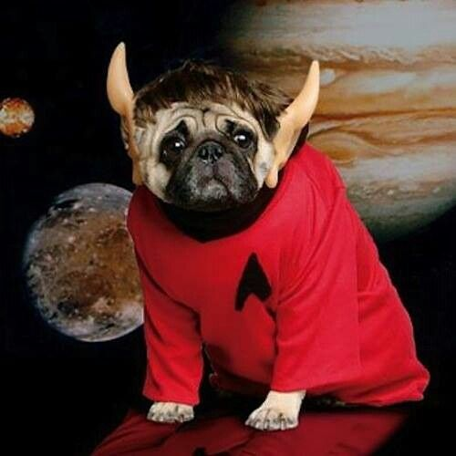 An alien redshirt, shared by George Takei on FB