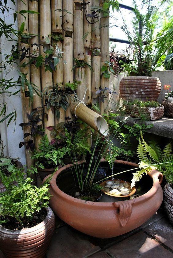Comment Secher Du Bambou Que Faire Avec Fontaine Bambou