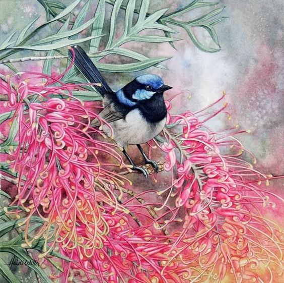 Bird painting by Heidi Willis. Watercolor