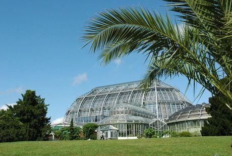 Tropenhaus Im Botanischen Garten Berlin Botanical Gardens Tropical Greenhouses The Pleasure Garden