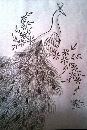 Beautiful Peacock Sketch Pencil Sketches Pinterest