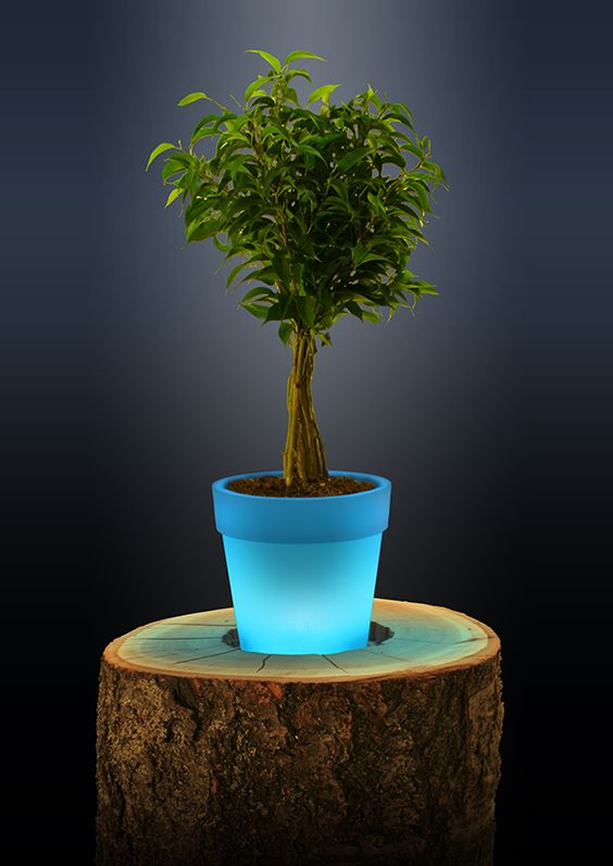 Can't find the perfect present? Check our web page! #TechPot #FlowerPot http://techpot.us/home