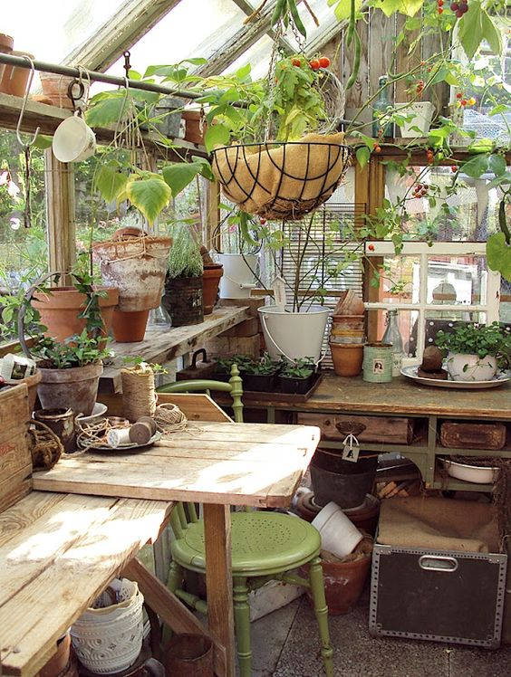 inside potting shed:
