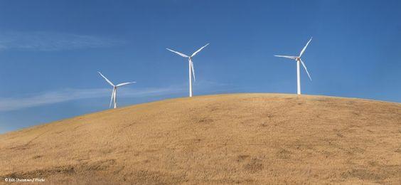 Wind-farm-climate