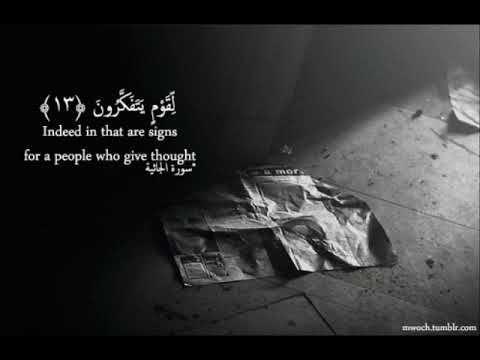 سورة الجاثية عبدالودود حنيف تلاوة في قمة الروعة Quran Top Videos Youtube Videos Watch Video