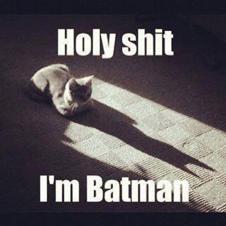 """Batman"" via twitter"
