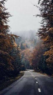 اجمل صور خلفيات ايفون 2019 Iphone Wallpaper Nature Photography Landscape Autumn Aesthetic