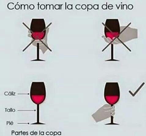 Cómo Tomar La Copa De Vino Copas De Vino Vinos Y Quesos Comida Y Vino