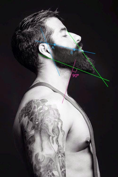 beard lines-this is why we all learn math/geometry etc in school......who knew